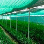 Как правильно выбрать и применить затеняющую сетку для огорода
